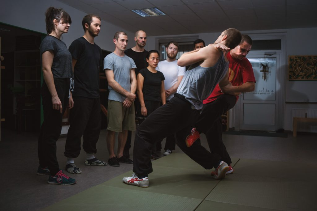 Wing Chun Grappling und Groundfight (Anfänger)