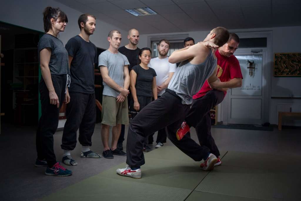 Wing Chun Grappling and Groundfight (Beginners)
