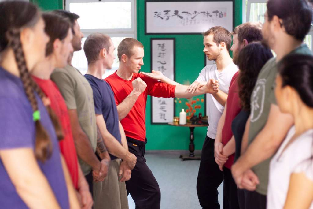 Wing Chun Hand Techniques (Beginners)